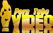 Vip Porns - Daily Free Porn